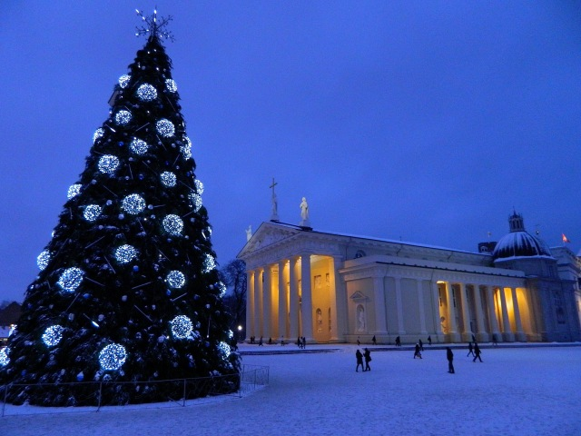 Vilnius cathedral christmas tree winter snow