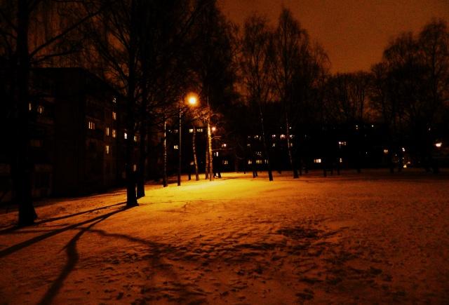 Savanoriu prospektas Vilnius neighbourhood night snow