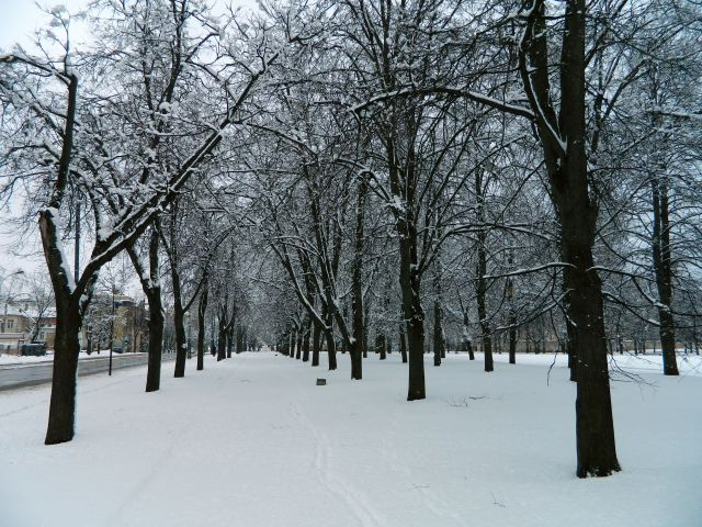 Vilnius snow 1 April 2013