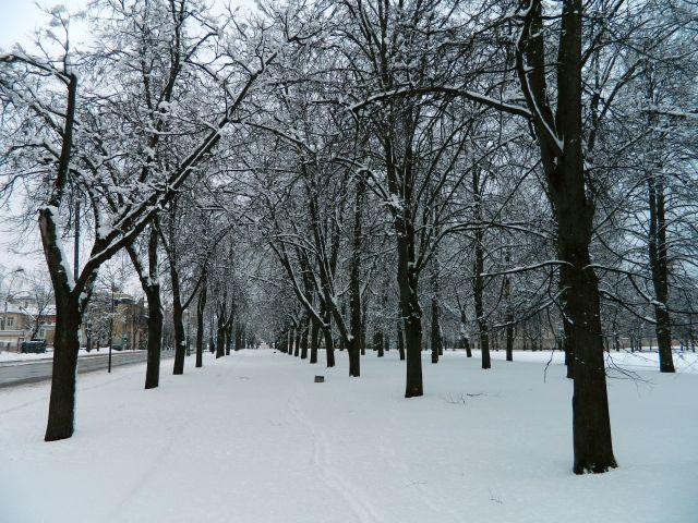 Vilnius snow 1 April 2013