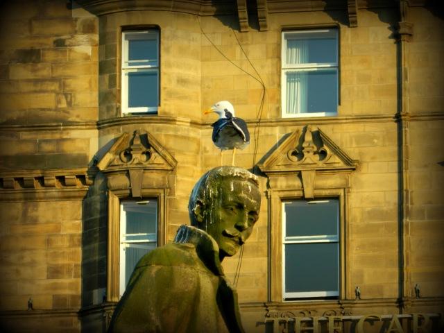 bird shitting on statue