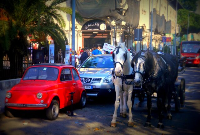horses cars Messina