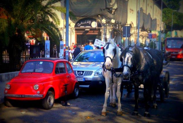 horses cars Messina