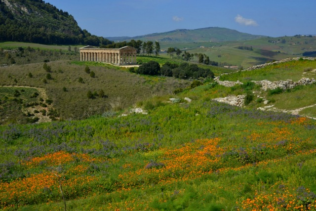Segesta temple in nature