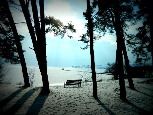 bench snow