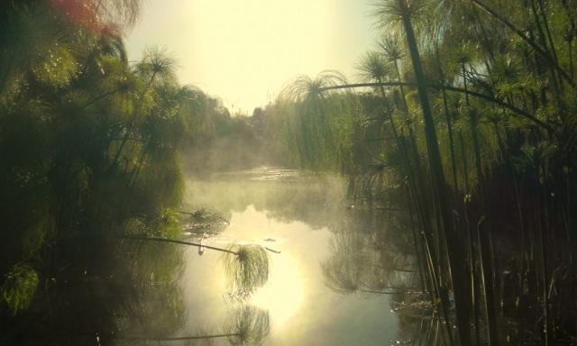 Papyrus Nebel 2