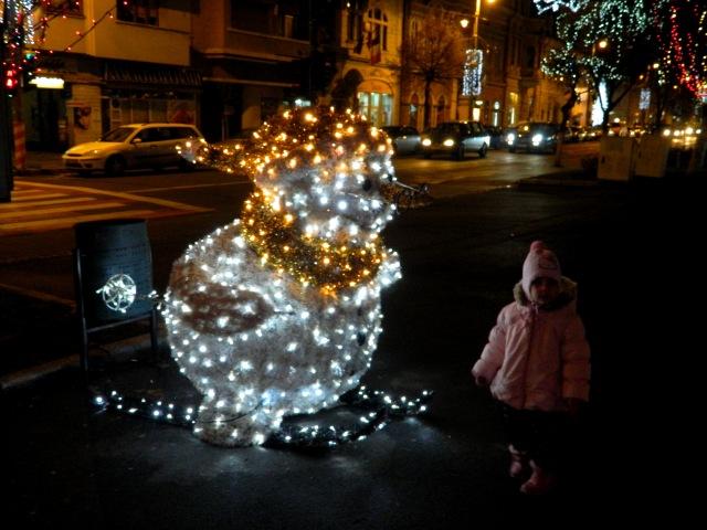 Targu Mures Christmas 5