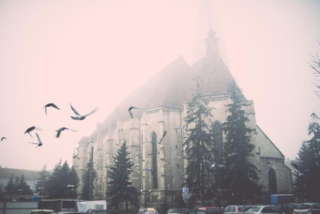 DL Cluj fog 2
