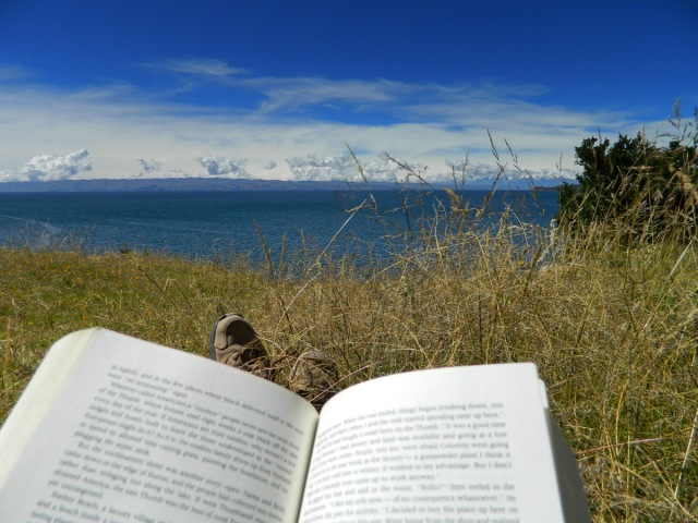 Image result for reading by the lake