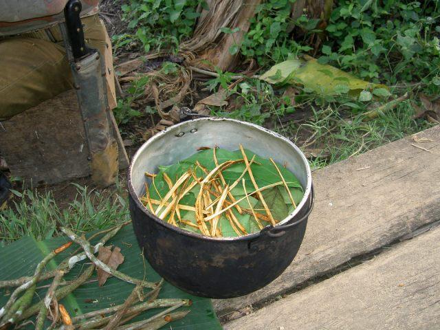 ayahuasca_prep