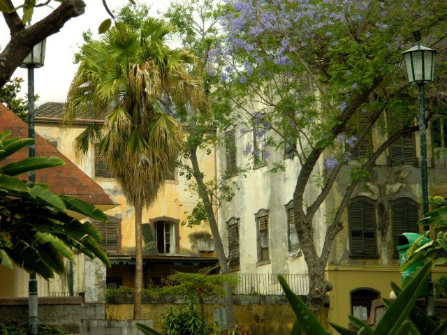 park Funchal old houses.JPG