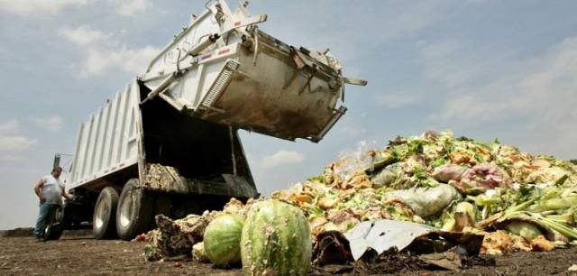 food-waste_opt-702x336