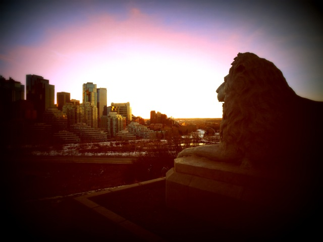 lion Calgary sunset.JPG