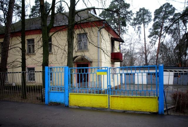 yellow-blue (3)